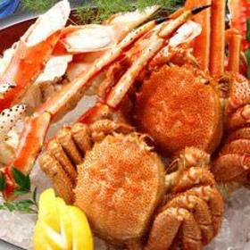 北海道食市場 丸海屋 パセオ店 image