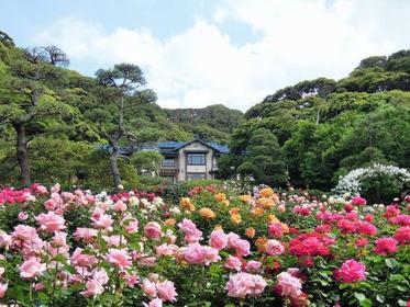 Kamakura Museum of Literature image
