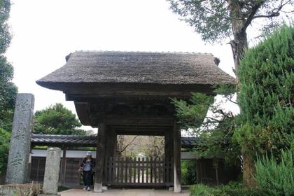 極樂寺 image
