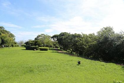 大崎公園 image