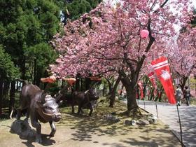 古舘製麺 image