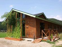 西方寺のしだれ桜 image