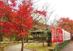 浦山ダム image