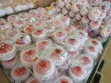 鈴廣のかまぼこ博物館 image
