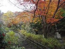 航空自衛隊浜松広報館(エアーパーク) image
