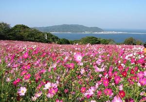Kyusuitogeyuranhodo image