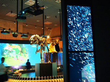 大寧寺 image