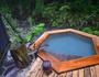 諸鈍長浜のデイゴ並木 image