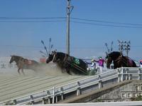大聖寺 image