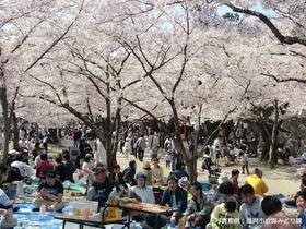 Iwakura Gojo Kawa image