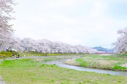 小野町 ~春の夏井千本桜遊歩道からリカちゃんキャッスルへ~