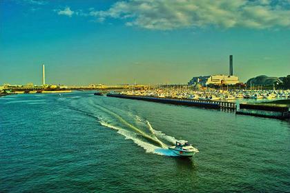 【海の駅 散策】夢の島マリーナ周辺コース