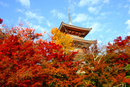 清水寺の西側を歩いてみよう!
