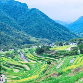 小豆島・中山エリアのかわいい動物と雄大な自然に触れてみよう!