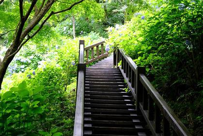 唐津駅の南側の自然を散策してみよう!(1)