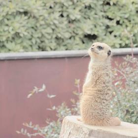 日向住吉駅から宮崎市内の芸術と自然の文化施設を巡る