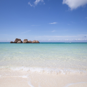 アラハビーチから沖縄本島を横断してみよう!