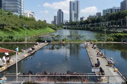 Urban Outdoors in Tokyo