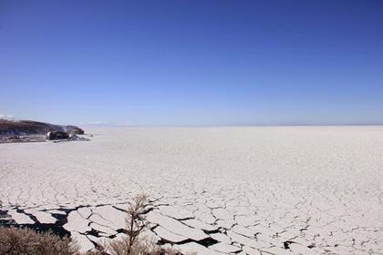 「プユニ岬」の流氷