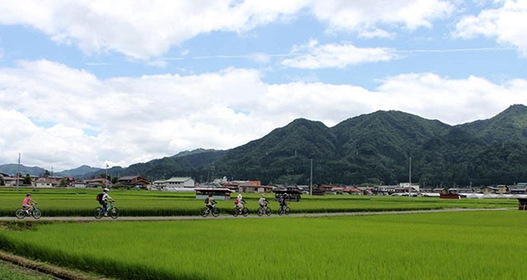 Go Cycling For A New View Of Japan