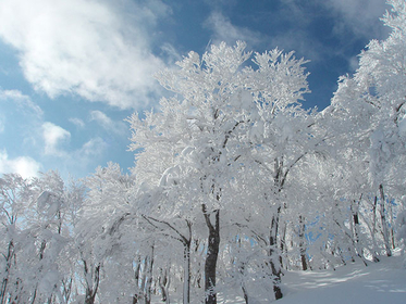 【アウトドア】雪と氷の絶景を楽しむ冬のアウトドアスポット