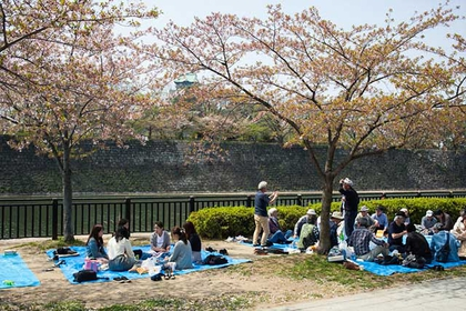 How to Plan a Picnic in Japan