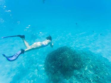 慶良間の海をダイビング