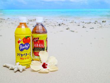 【沖繩】讓人沉浸在自己小天地的私房海灘10選