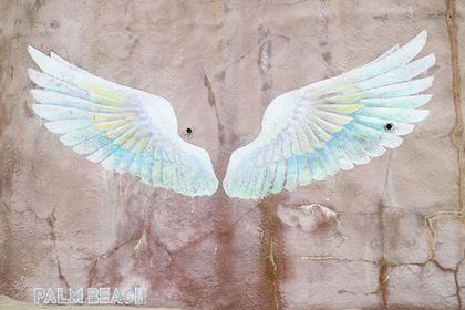 系島「天使之翼」