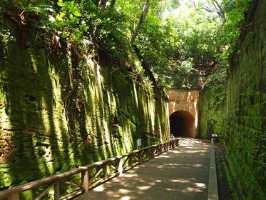 苔生す緑の岩壁