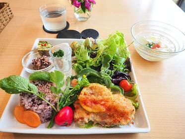 「APRON CAFE(エプロンカフェ)」のランチ。お肉とお魚が選べます。