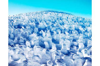 蔵王名物・樹氷。海外では「スノーモンスター」と呼ばれています。