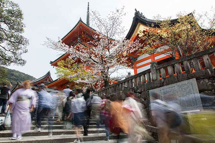 14 of the Best Activities in Kyoto