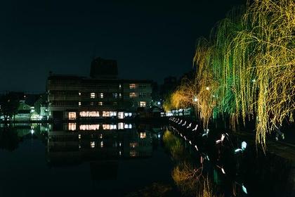The streets of Nara