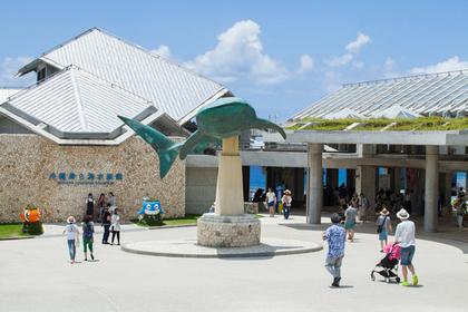 Ocean Expo Park, Okinawa Churaumi Aquarium