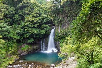 Trekking Through Izu's Mountains
