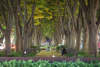 The Parks of Sendai