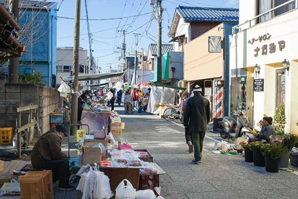 Katsuura Morning Market: Farm-to-table Goodness and Old-fashioned Charm