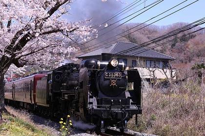 Paleo Express steam locomotive