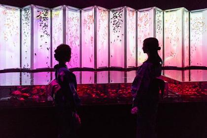 goldfish at Eco Edo Nihonbashi Art Aquarium