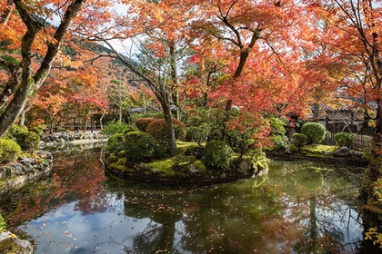 Five places to see fall colors in Kyoto