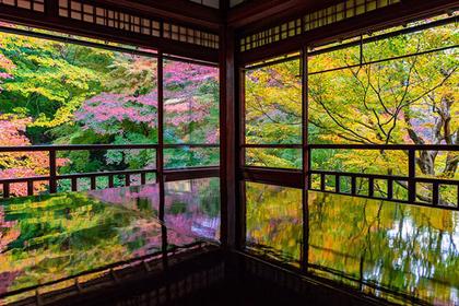 Mountain Escape: Rurikoin in Kyoto