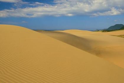 <日本の砂丘といえばここ>鳥取砂丘コース