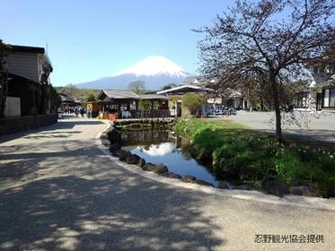 <いつ来ても富士山が印象に残る山中湖>山中湖コース