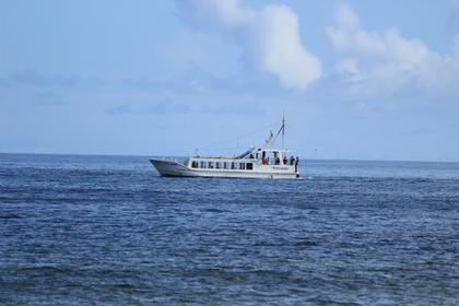 <波が白くはじける岩礁が延々と続く海岸線>勝浦・鴨川南房総コース
