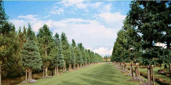 湧永満之記念庭園 image