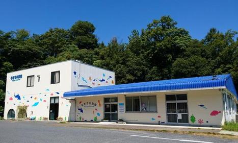 海滨水族馆 image