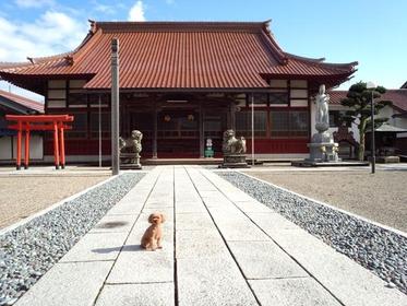 Shofukuji Temple image