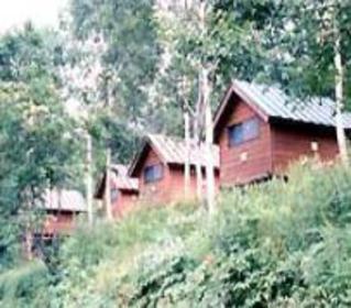 野反湖キャンプ場 image