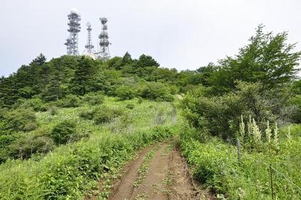 Mt. Osutaka image